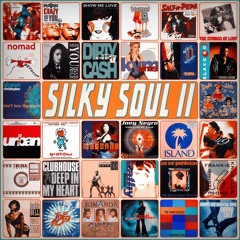 S.W. presents Silky Soul 2 - A vocal ride into early 90s Garage House