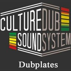 Culture Dub Sound featuring Troy Berkley (Dubplate)