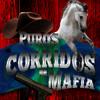 Download Los narcos satanicos Mp3