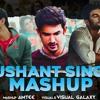 Download Sushant Singh Mashup   Tribute to Sushant Singh   Amtee   Visual Galaxy Mp3