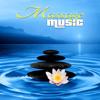 Irish Flute Music (Hot Massage).mp3