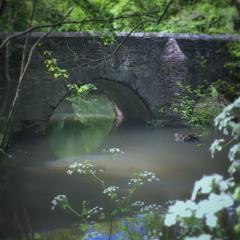 Frome Fairies - Eastville Park, Bristol #3