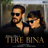 Download Tere Bina Mp3