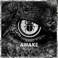 David Bau - Awake (KUSP Remix)