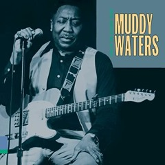 Muddy Waters - You Can't Lose What You Ain't Never Had & E. Leggo - Battle Rattle (Blues Hop Mashup)