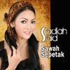 Sawah Sepetak
