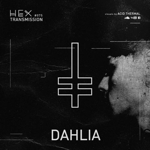 HEX Transmission #075 - Dahlia