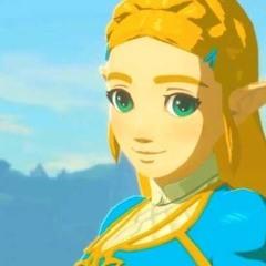 D Savage Zelda