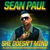She Doesn't Mind (Firebeatz Radio Edit)