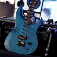 Element Guitars (ridiculous Friedman BE distortion test)