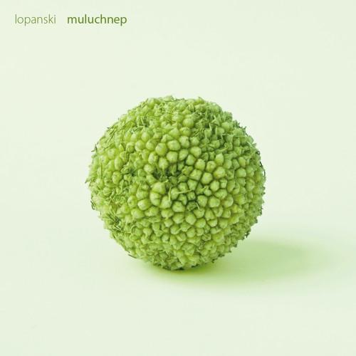 muluchnep