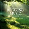Serenity Music
