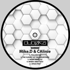 Mike.D & CAlinie - Follow Me [Preview]