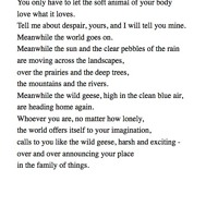 05 Wild Geese by Mary Oliver