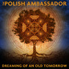 Download The Polish Ambassador - Center for Kids Who Can't Dance Good Mp3