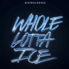 BigWalkDog - Whole Lotta Ice (feat Lil Baby & Pooh Shiesty)| YM PRODUCTION