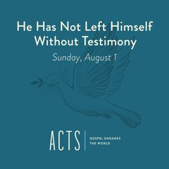 08/01/21 AM - He Has Not Left Himself Without Testimony