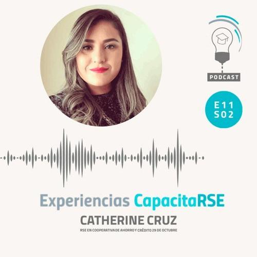 Experiencias CapacitaRSE