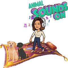Sesión 1: Animal Sounds