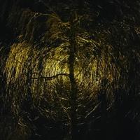 Saulala Motula, Užkaisk, Užkaisk (TJNP Remake)