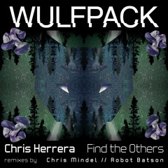 Chris Herrera - Find The Others (Robot Batson Remix) PREVIEW