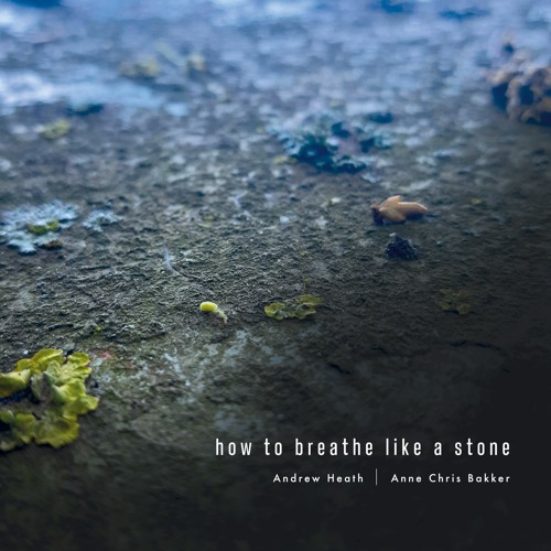 wlr089 Andrew Heath & Anne Chris Bakker - How To Breathe Like A Stone