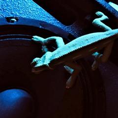 Rolln Gecko