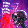 Travis Scott - WISH YOU WERE HERE (Live Edition Album)