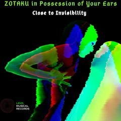 22. Close to Invisibility