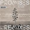 Promises (Franky Rizardo Remix)