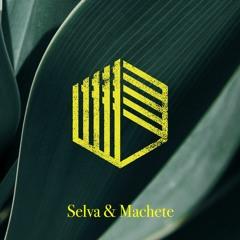 DJ Arzur Miller - Selva & Machete