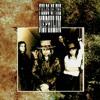 Psychonaut (live Roskilde 2000)