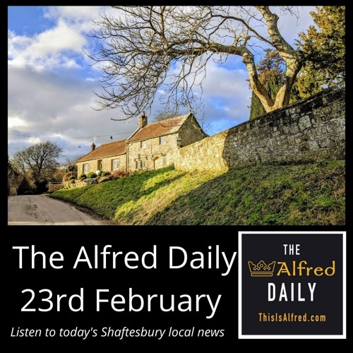 The Alfred Daily - 23rd February