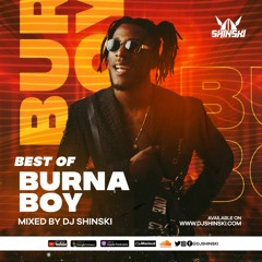 Best Of Burna Boy Mix - Dj Shinski [Kilometer, Ye, Anybody, On the Low, Jerusalema, Killin Dem, 23]