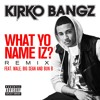 What Yo Name Iz? (feat. Wale, Big Sean and Bun B) (Remix)