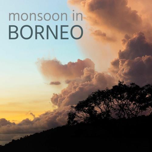 Monsoon in Borneo - Album Sample