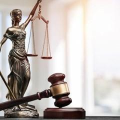 Reportagem Especial - Área Direito
