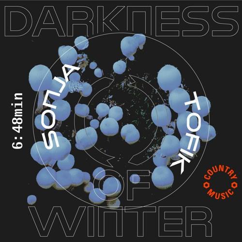 Sonja Tofik - Darkness of Winter