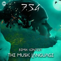Name In Process - The Music Languages (F.S.G Remix) Out Soon!!