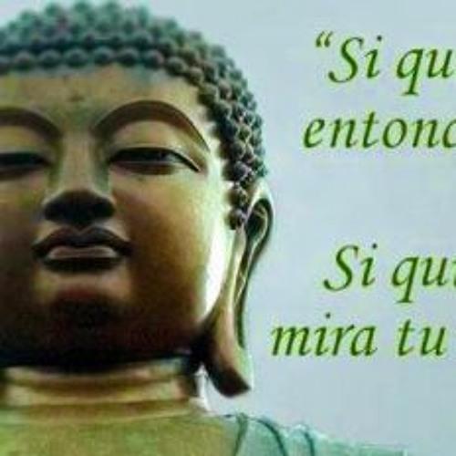 Meditación, Karma-causa y efecto con Ven. Jesús Revert dic. 2013