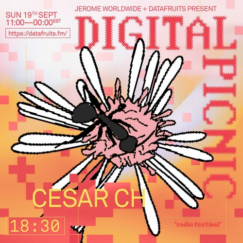 JEROME WORLDWIDE DIGITAL PICNIC - CESAR CH