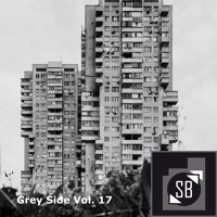 210501 Techno from the grey side // Vol. 17