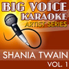 Shoes (In the Style of Shania Twain) [Karaoke Version]