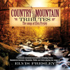 Burning Love (Country Mountain Tributes: Elvis Presley Album Version)
