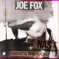 Joe Fox - What's The Word (Ft. Nas)
