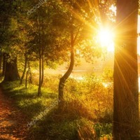 Sinfonia « Morning Sun » for Electronic