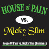 Jump Around (House of Pain vs. Micky Slim Radio Edit)