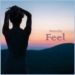 Memo Pro - Feel