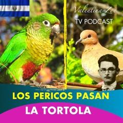 LOS PERICOS PASAN ALFREDO ESPINO🦜🌤️ | La Tortola Alfredo Espino🕊️🌄 | Poemas Poeta Alfredo Espino