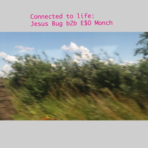 Connected to Life: Jesus Bug & E$0 Monch